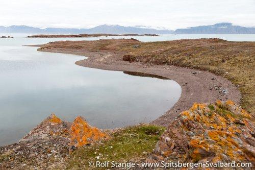 Gallery 2:Liefdefjord & Woodfjord – Spitsbergen 2018