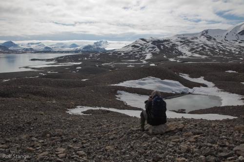 Day 11 - Grønfjord, Longyearbyen