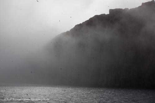antigua2013-wetter-galerie