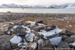 210912a_Raudfjordhytta_030_D