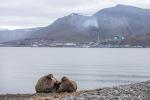 210715_Longyearbyen_18_D