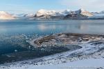 b1i_St-Jonsfjord_20Sept14_178_D