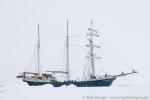 190605f_Raudfjord_09