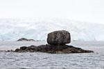 a6m_fuglefjord_02juli15_41
