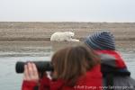 Wäre doch schade, wenn man den Eisbären übersieht :-)