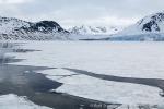 160606b_Ayerfjord_33_D