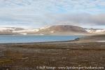 170803f_Jaderinfjord_001