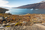 f8x_Harefjord_03Sept13_031