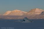 c1c_Tempelfjord_09April13_424