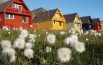 a3_Longyearbyen_15Juli08_24