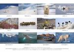 rz-spitzbergen-kalender-2017-a5-14