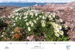 spitzbergen-kalender-2018-a3-07