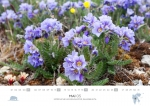 rz-spitzbergen-kalender-2019-a3-06