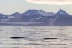 160726_storfjord_037