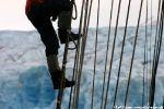 ... kann auf den Mast klettern