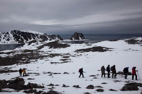Tag 7 - Ytre Norskøya, Danskøya