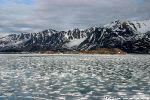 In den Fjorden findet sich ,,,
