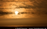 f9y_Denmark-Strait_13Sept13_76