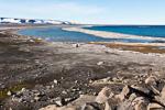 170802b_sorgfjord_14