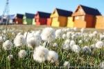 a3_longyearbyen_15juli08_12
