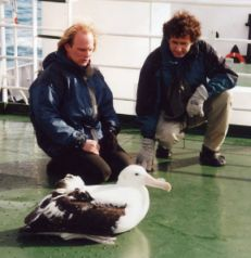 Rolf Stange and a Wandering Albatross