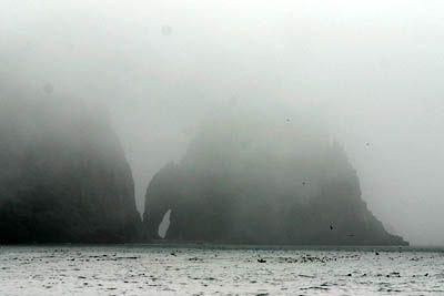 Information about the ecosystem Barents Sea: BarentsPortal