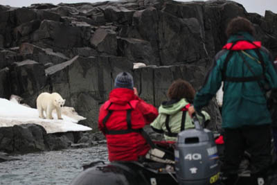 Fewer dangerous confrontations with polar bears - Habenichtbukta