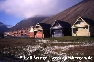 Longyearbyen today: modern housing