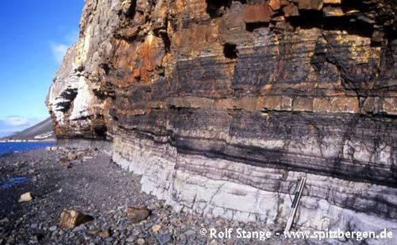 Horizontal layers of sediment (sandstone, siltstone) from the lower Tertiary. Fuglefjellet, west of Longyearbyen