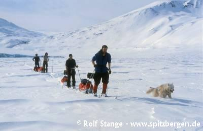 Cross-country skiing in the Arctic: great pleasure for sportive people