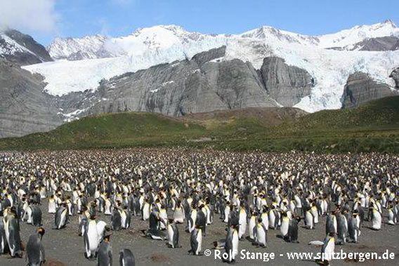Antarctic Peninsula 2006/2007
