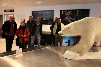 The very first polar bear of the season (Longyearbyen airport)