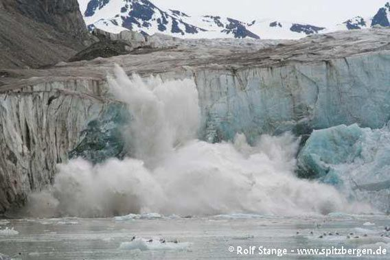 Kalbende Gletscherfront, Fjortende Julibukta