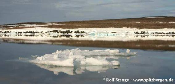 Drift ice floe, iced-over shoreline and barren tundra on Nystrømøy)
