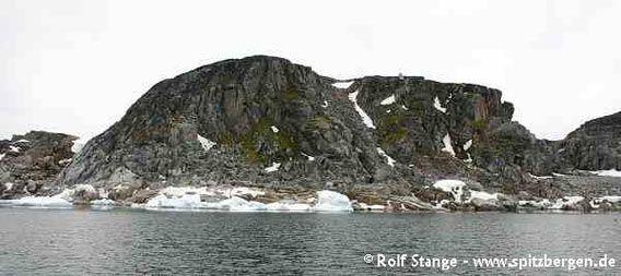 Foynøya