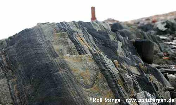 Geology at Crozierpynten, Sorgfjord