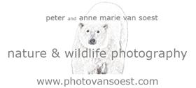 Polar links: photovansoest.com