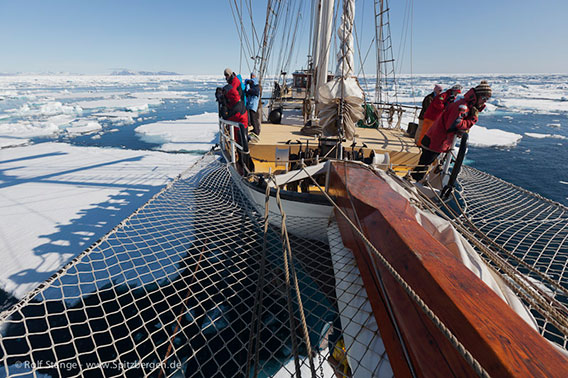 Arctic season 2011