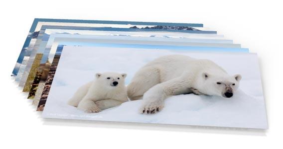Postcard Set »Spitsbergen«