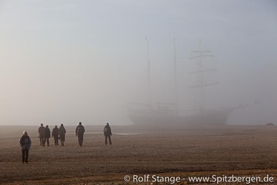 Fog in Wahlenbergfjord