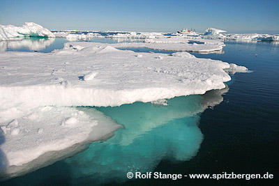 Ice loss in the Arctic -Drift ice off East Greenland.