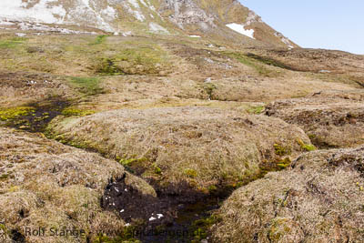 Methane from arctic permafrost