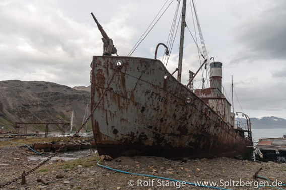 Grytviken: Walfangschiff Petrel