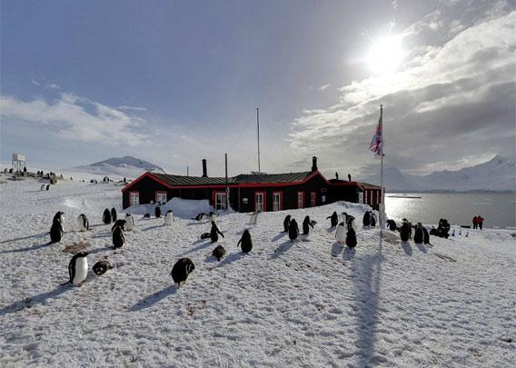 Panoramas port lockroy antarctic peninsula for Port lockroy