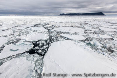 Drift ice, Barents Sea