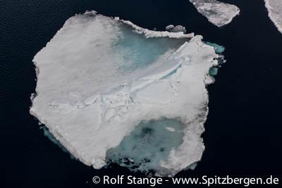 Eis Arktis