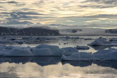 Treibeis Arktis