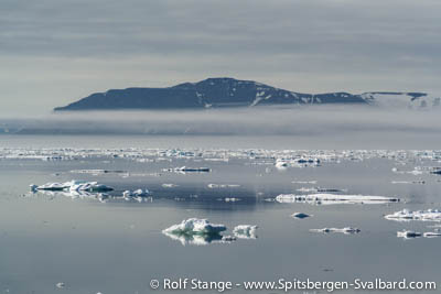 arctic drift ice