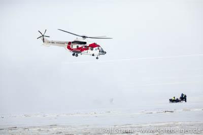 Eisbär Longyearbyen