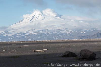 Expedition Jan Mayen 2016: one seat available